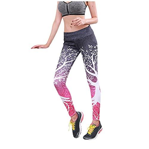 QTJY Pantalones de Yoga sin Costuras para Mujer, Leggings de Cintura Alta elásticos para Correr en el Gimnasio, Flexiones de Brazos y Pantalones de Entrenamiento para Celulitis EL