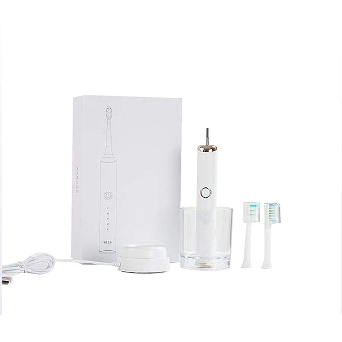 怠惰凍る慢電動ソニック充電式歯ブラシ、5モード、DuPontソフトブラシ、IPX7防水、誘導充電、低ノイズ