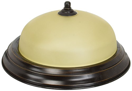 Progress Lighting P3924-20T 1-Light Flushmount, Antique Bronze