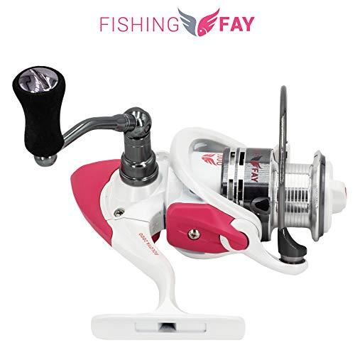 FISHINGFAY® ROLOYA Reel 2000 Angel Spinnrolle ideal für Jede Rute mit Wurfgewicht zwischen 20-80gr oder als Schlepprute, Hecht, Waller, Zander, Dorsch oder Lachs