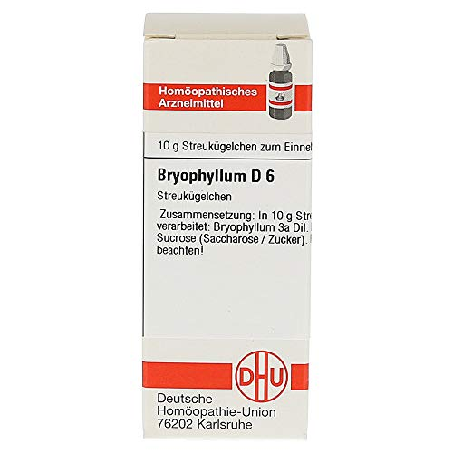 DHU Bryophyllum D6 Streukügelchen, 10 g Globuli