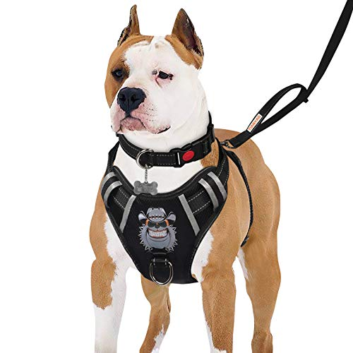 """TIANYAO Dog Harness No-Pull Dog Vest Set Reflective Adjustable Oxford Material Pet Harness for Medium Large Dogs with Leash and Collar (X-Large(Chest:35-43""""), Black)"""
