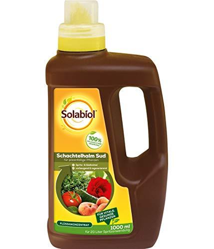 Solabiol Schachtelhalm Sud, biologisches Pflanzenstärkungsmittel zur Kräftigung und Stärkung pilzanfälliger Pflanzen, 1 Liter
