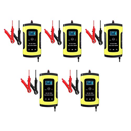 Save %29 Now! D DOLITY 5pc 6V/12V Volt 6 AMP Automatic Intelligent Battery