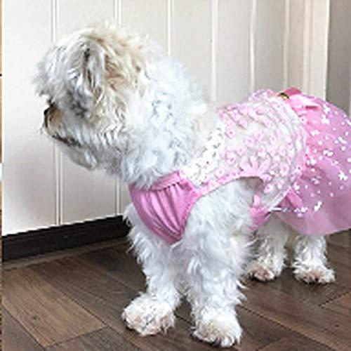 Hond jas. AB060 Mooie Kat Jurk Kant Bruiloft Rokken Jurken voor Huisdieren Party Kostuum, Grootte: M (Pink) ZHUHX, roze