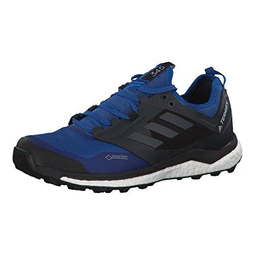 adidas Herren Terrex Agravic Xt GTX Traillaufschuhe, Blau (Belazu/Gricin/Negbás 000), 45 1/3 EU