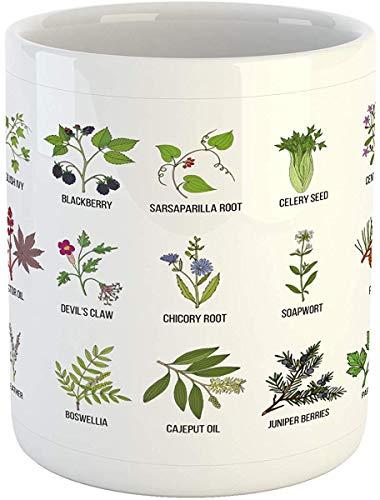 Koffie Mok 11 oz Thee Beker, Kruid Mok, Natuurlijke Behandeling Infografische Schema met Gezonde Planten en Namen Herbalisme Thema, Gedrukte Keramische Koffie Mok Water Thee Drankjes Beker, Multi kleuren