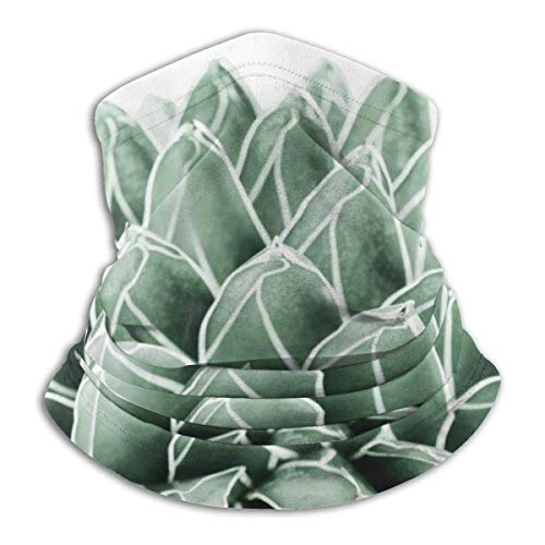NA Bandeau,Bandeau De Décoration Faciale Succulente Cactus Nature, Séchage Rapide 12-en 1 Bandeau pour L'Été Patry Ride,25X30Cm