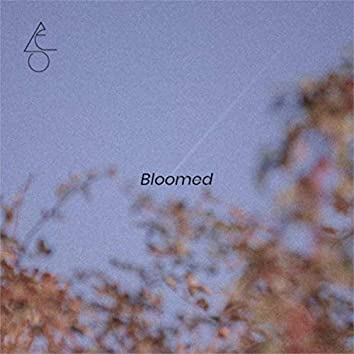 Bloomed (feat. Mario Russo)