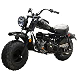 Massimo Motor Warrior200 196CC Engine Super Size Mini Moto Trail Bike MX Street for Kids and Adults Wide Tires Motorcycle Powersport CARB Approved (Black)