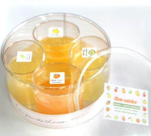 【冷凍】CITRUS CONTAINER 和歌山産旬の柑橘フルーツのゼリー4種詰め合わせギフト〜シトラスコンテナ おもたせに【ひな祭・ホワイトデー・プレゼント・お祝い・お礼に】