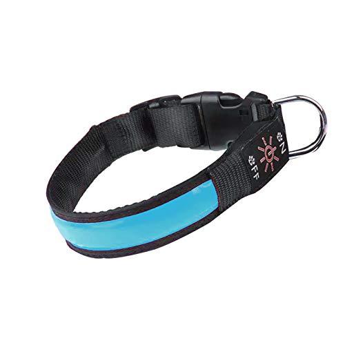 Collar de Perro LED Iluminado Collar de Perro USB Recargable Impermeable,Banda Nocturna para Perros con 3 Modos de Brillo,Hace Que su Perro Sea Visible,Seguro y Visto (Blue, M)