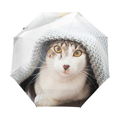 Kleiner Regenschirm Winddicht Regen im Freien Sonne UV Auto Compact 3-Fach Regenschirmabdeckung - Katze mit Steppdecken bedeckt