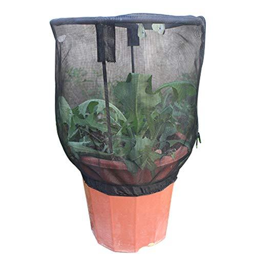 Alimentation des Insectes Net Papillon Habitat Pot Fleur pour Enfants Plante Parasol Self Standing Cage Jardin ornemental Portable Cover Raising Observation Terrarium