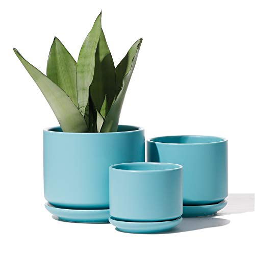 POTEY 055701 Planter Flowerpots Indoor - 4+5.5+6.5 Inch Ceramic Planters Bonsai Container with Drainage Holes & Removable Saucers for Plants Succulent Cactus Flowers(Plants Not Included)