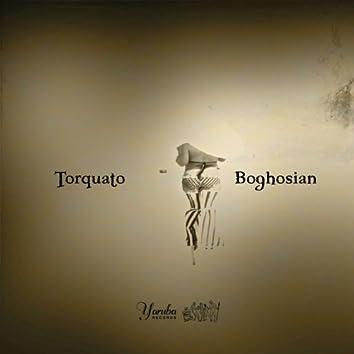 Torquato & Boghosian