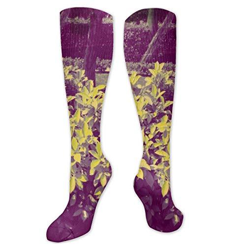 Calcetines de poliéster y algodón por encima de la rodilla, retro, unisex, para muslo, cosplay, botas largas, para deportes, gimnasio, yoga, descarga, Nature JD