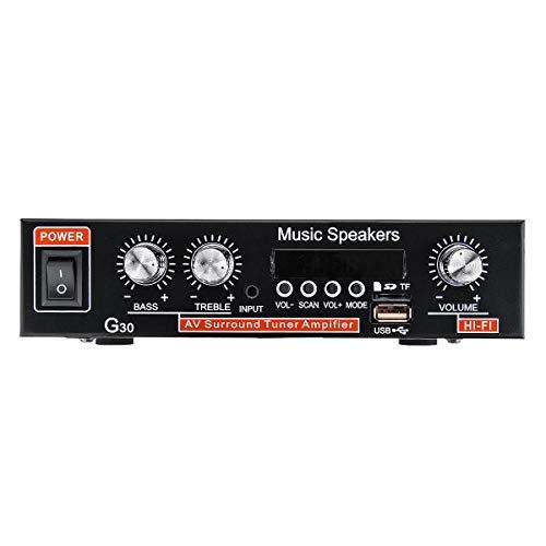 IENPAJNEPQN 12V 220V de Dos vías Car Audio Bluetooth Car Amplifier 2 Channel Digital Power