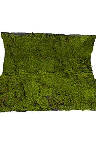 Emerald künstliche große Moosmatte (Polstermoos) Größe ca. 98 cm x 98 cm