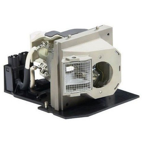 BL-FS300B SP.83C01G001 Lamp for OPTOMA EP1080 EP910 H81 HD80 HD8000 HD800X HD803 HD81 HD81-LV TX1080 Projector Bulb with housing Bl Fs300b Replacement Lamp