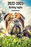 2022-2023 Bulldog Inglés Agenda Semanal: 221 Páginas   Tamaño A5   24 Meses   1 Semana en 2 Páginas   Planificador   Agenda Semana Vista   Canófilo   Perro   En Español