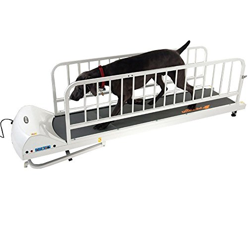 GoPet Treadmills For Dogs Like The PR725 Provide...