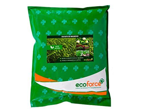 CULTIVERS Sulfato de Magnesio de 5 kg. Abono Universal ecológico 100% Natural. Favorece el Crecimiento de Cultivos, Jardines y Plantas de Interior. Fertilizante de Magnesio Alta solubilidad