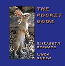 The Pocket Book