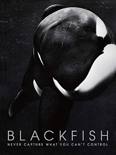 Blackfish [OmU]
