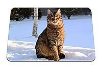 26cmx21cm マウスパッド (猫は自分をなめる冬の雪) パターンカスタムの マウスパッド