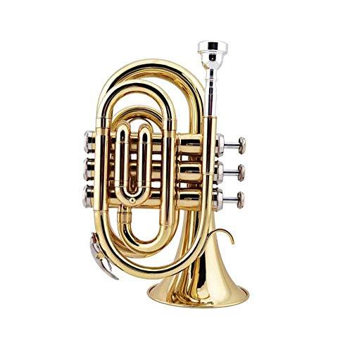 WYKDL Trompete Messing Standard-Trompete Set Schüler Anfänger mit Hard Case Handschuhe Mundstück und Ventilöl Trompete Tragbare Trompete B-Band-Taschen-Short Kupfer Messing Lack
