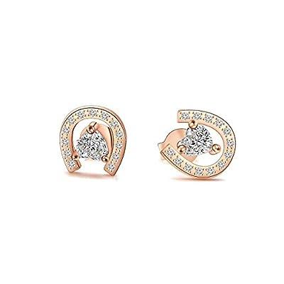 AKTAP Horseshoe Stud Earrings for Girls Fashion Jewelry Crystal Cubic Zirconia Earrings (Rose Gold)