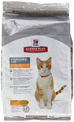 science diet cat food indoor