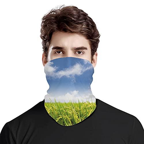 FULIYA Gran cara cubierta bufanda protección cuello, cultivo asiático, granja arroz, campo, agricultura, comida oriental, variedad de bufanda, unisex