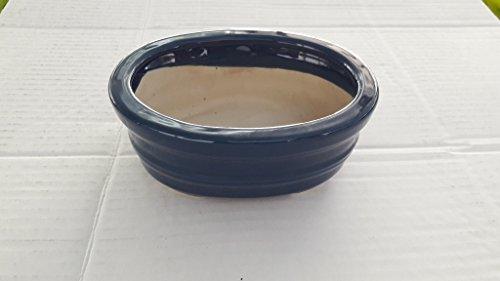 Oval blue Ceramic Bonsai Pot - Japanese Houtoku Brand - 5'' L / 4'' W / 2'' H