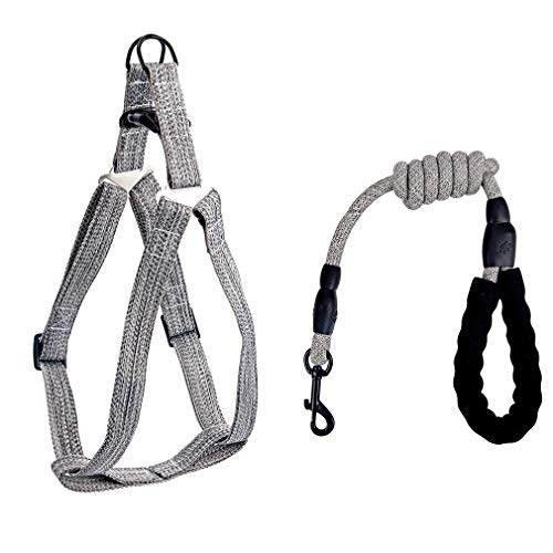 Dog Harness with Handle, Easy Walking No Pull Step in Puppy Harnesses and Leash Set, Adjustable Buckle Heavy Duty Pet Halter Lead Vest for Small Medium Dogs Large Breed, Outdoor Training, Grey M