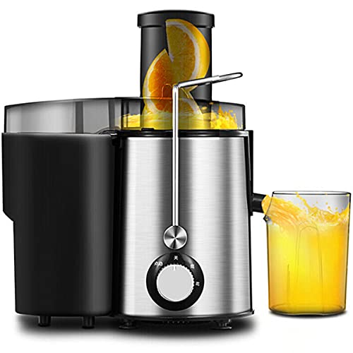 EXEDSCEND Fruit Juicer Professional Whole Vegetable Extractor, Cold Press Juicer with Upgrade Quiet Motor, Juice Jug and Brush for High Nutrient Juice BPA Free