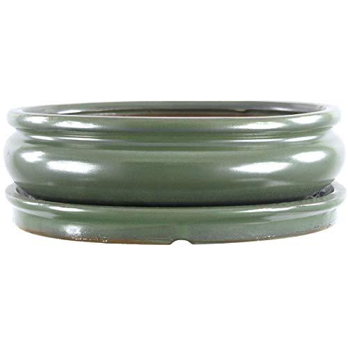 Bonsaischale mit Untersetzer 25x19.5x7.5cm Grün Oval Glasiert