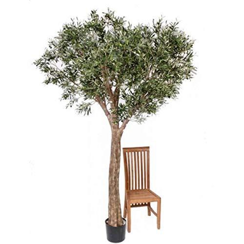 artplants.de Set 2 x Deko XXL Olivenbaum, getopft, uv sicher, 240cm - Künstlicher Olivenbaum - Kunstbäume