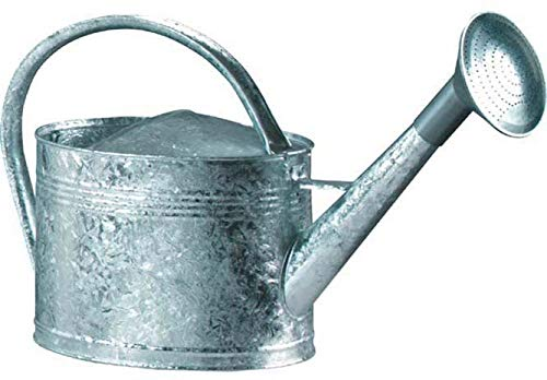 Guillouard - Regadera de acero galvanizado de 6 litros