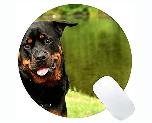 Runde Mausunterlage, Rottweiler Reinrassiger Hund Tier Dog Peaceful Pet Gaming Mauspad