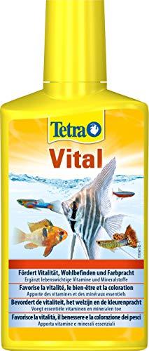 TetraVital Wasserpflege (zur Förderung von Vitalität, Wohlempfinden und Farbenpracht von Zierfischen, ergänzt lebenswichtige Vitamine und Nährstoffe), 250 ml Flasche
