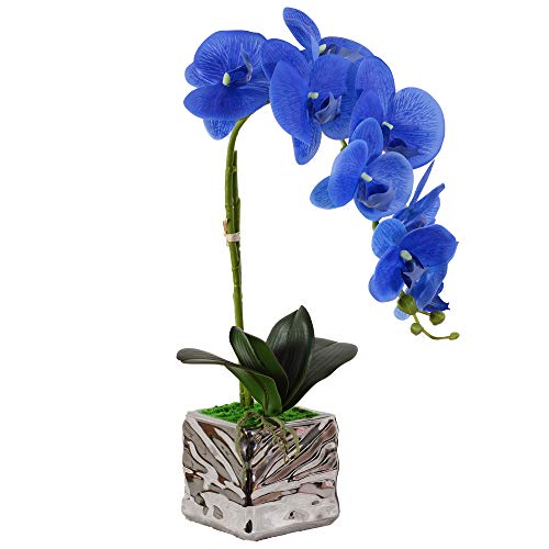 VIVILINEN Flores Artificiales Plásticos Flor de Phalaenopsis realistas Orquídea Mariposa Decoración Cálida para Hogar Dormitorio y Oficina (Azul)