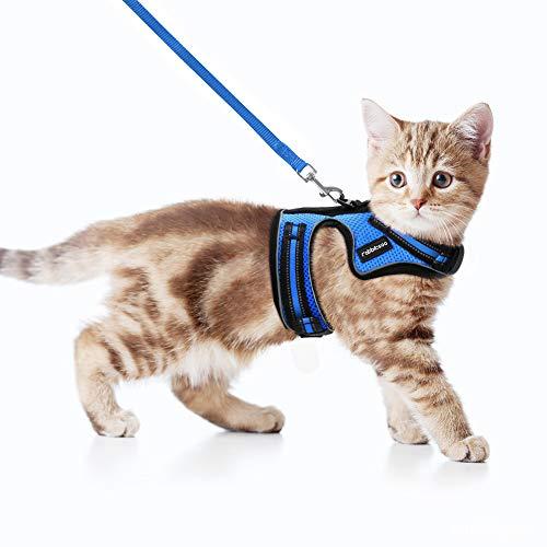 rabbitgoo Katzengeschirr mit Leine Geschirr für Katzen Ausbruchsicher Katzenleine Kitten Cat Harness Kaninchengarnitur Welpengeschirr für Kitten Kleine Hunde Chihuahua Katzenweste Verstellbar