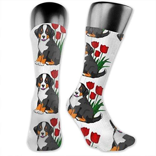 heefan Bernese Mountain Dog - Calcetines de poliéster para hombres y mujeres de 3,2 x 15,8 pulgadas para niños, niñas, escuela, senderismo al aire libre, cojín
