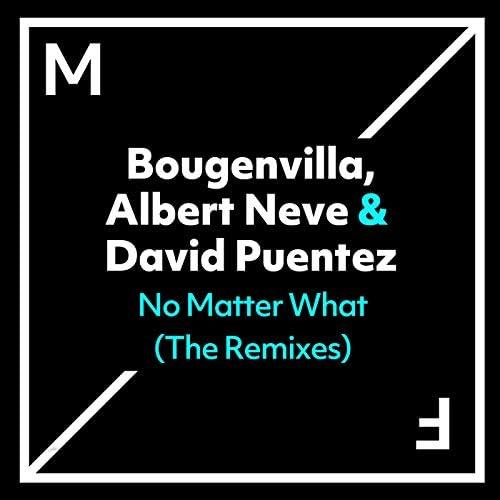 Bougenvilla, Albert Neve & David Puentez