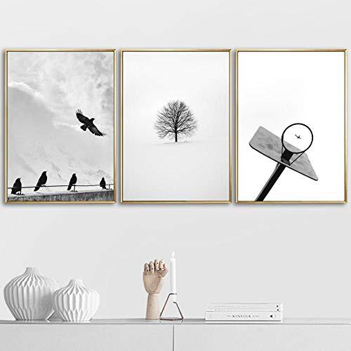 SHUTIAOQUN Basketball Rahmen Vogel Baum Pfeil Wandkunst Leinwand Malerei Nordic Black White Poster Wandbilder für Wohnzimmer Home Decor 40x60cmx3 Rahmenlos