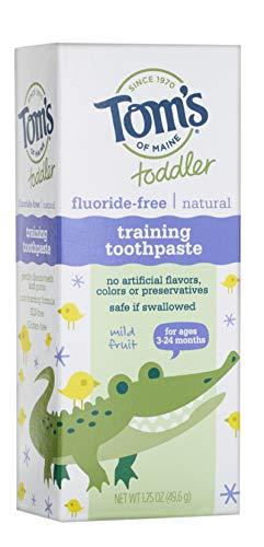 Tom's of Maine Fluoride-Free Toddler Training Toothpaste, Mild Fruit, 1.75 oz.