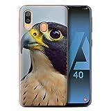 Stuff4 Phone Case for Samsung Galaxy A40 2019 Birds of Prey