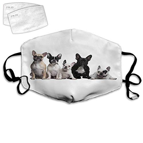 OPMLISIR Unisex Face Masks with 2 Filter,Group of Young French Bulldogs with Expressions Animal Lover Photo Washable Mouth Cover Adjustable Earloop and Nose Clip Reusable mask